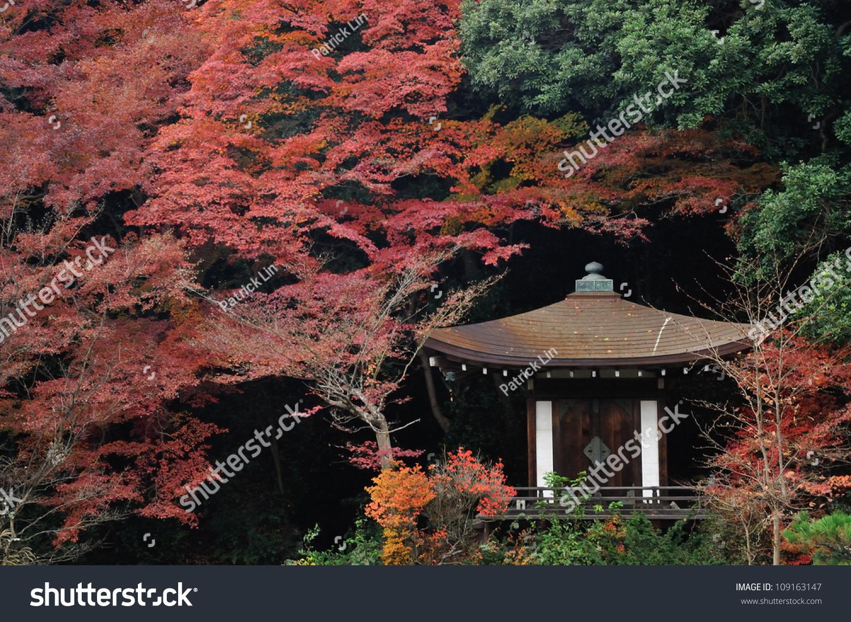 老式日本寺庙与秋天的枫树-复古风格,交通运输-海洛()