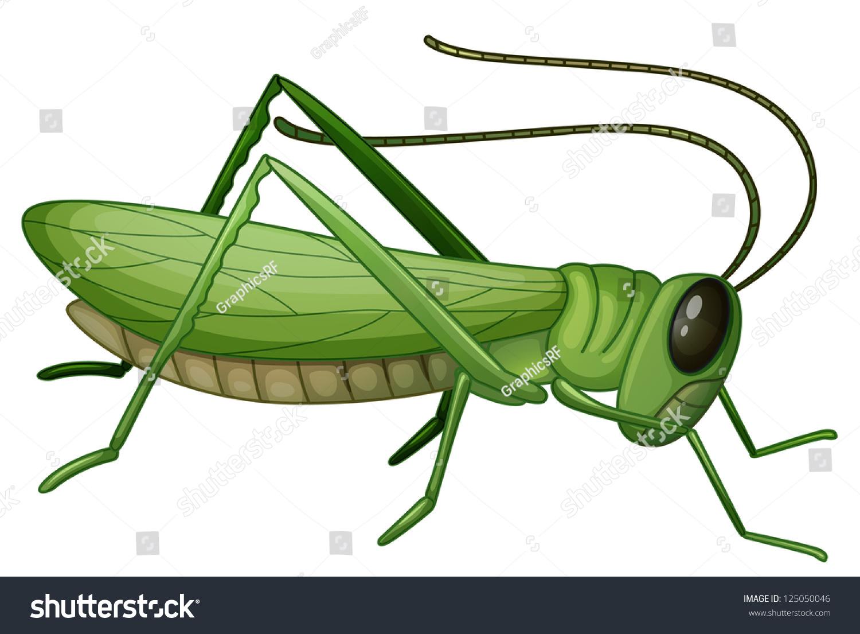 纸杯蝗虫制作方法图解
