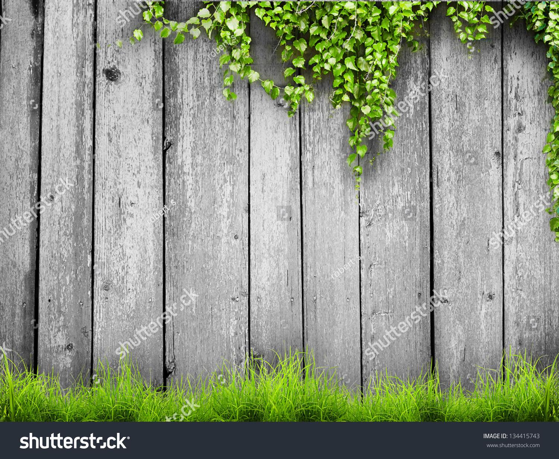 木栅栏背景下的新鲜春天的绿草和树叶植物-背景/素材
