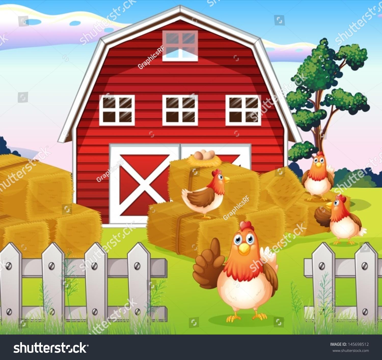 在靠近红巴恩豪斯农场的鸡图-动物/野生生物-海洛