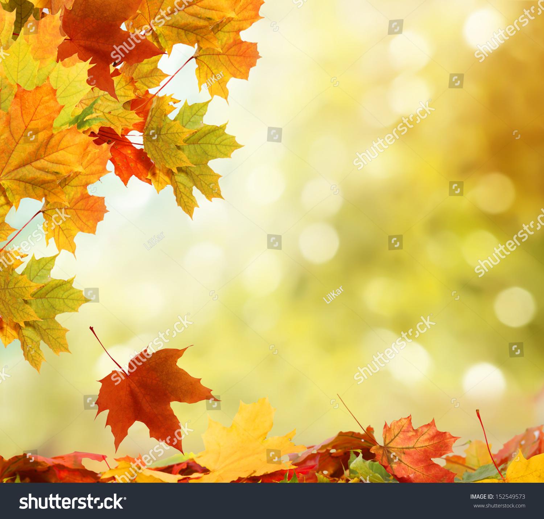 秋天的落叶-公园/户外,自然-海洛创意(hellorf)-中国图片