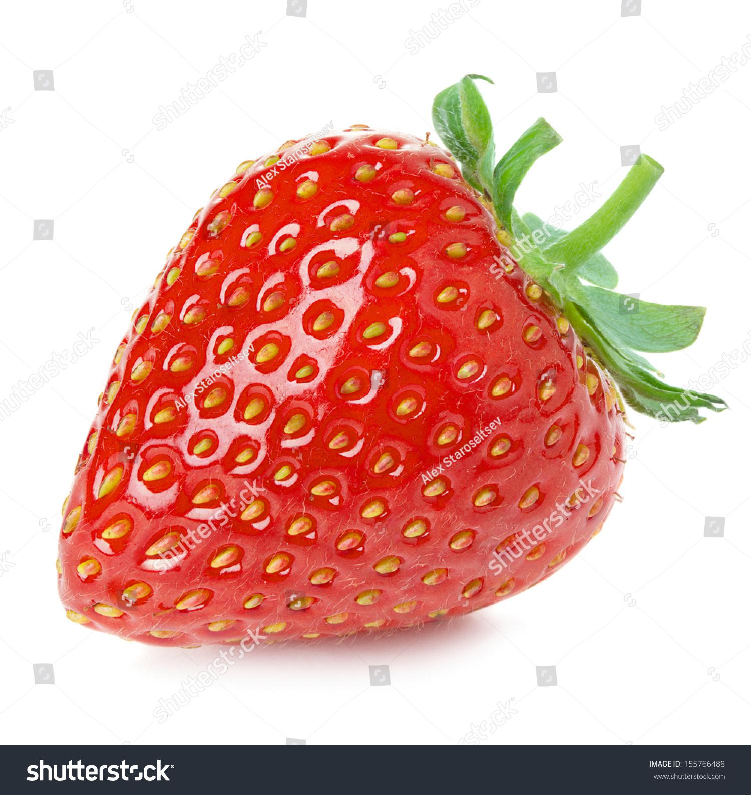 微信头像白底水果
