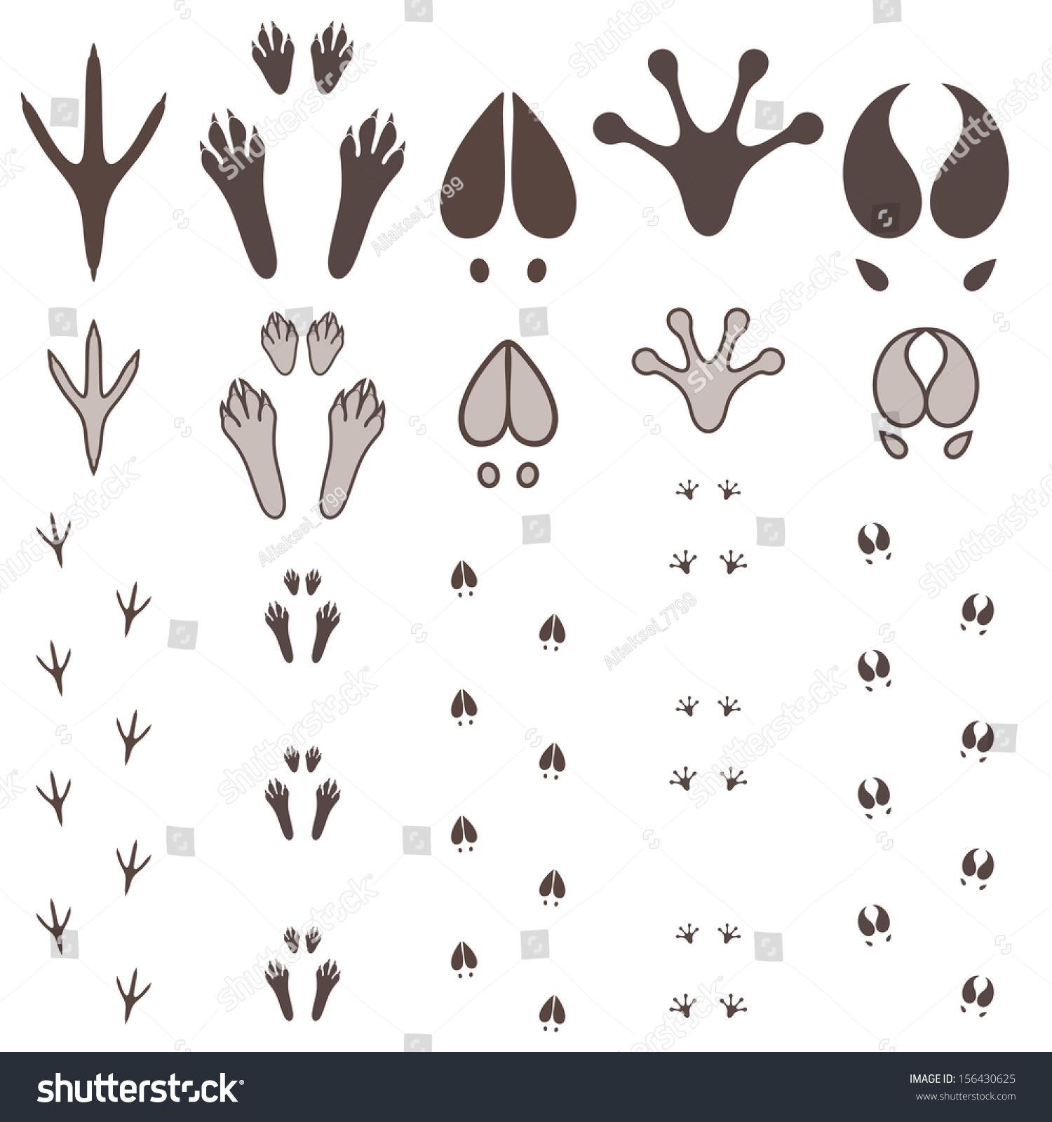 爪印-动物/野生生物,符号/标志-海洛创意(hellorf)