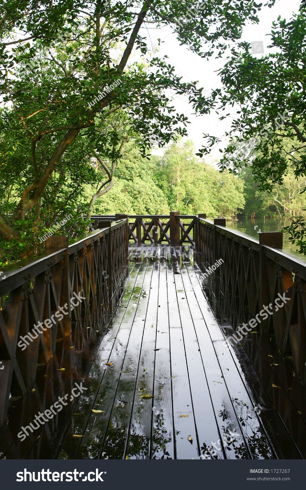 微信头像风景木桥
