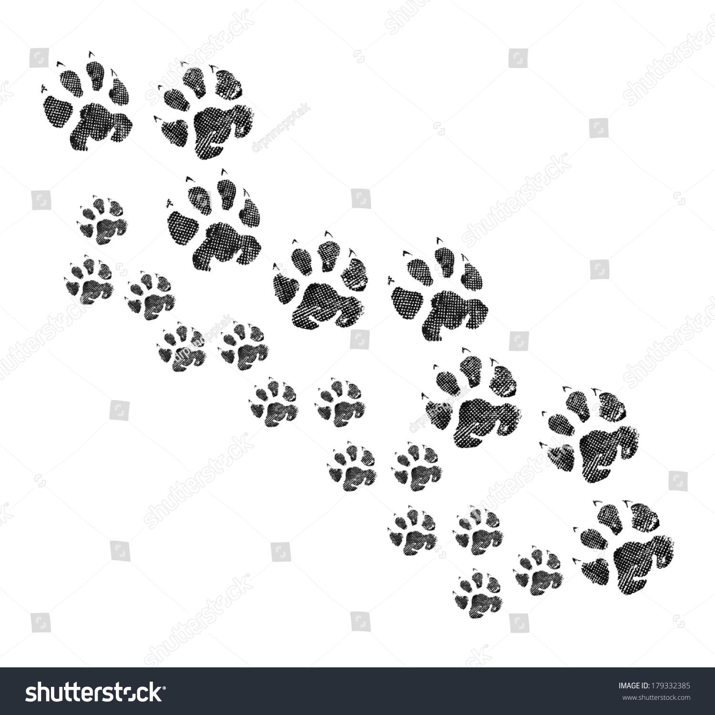 动物足迹一起散步-动物/野生生物,背景/素材-海洛创意