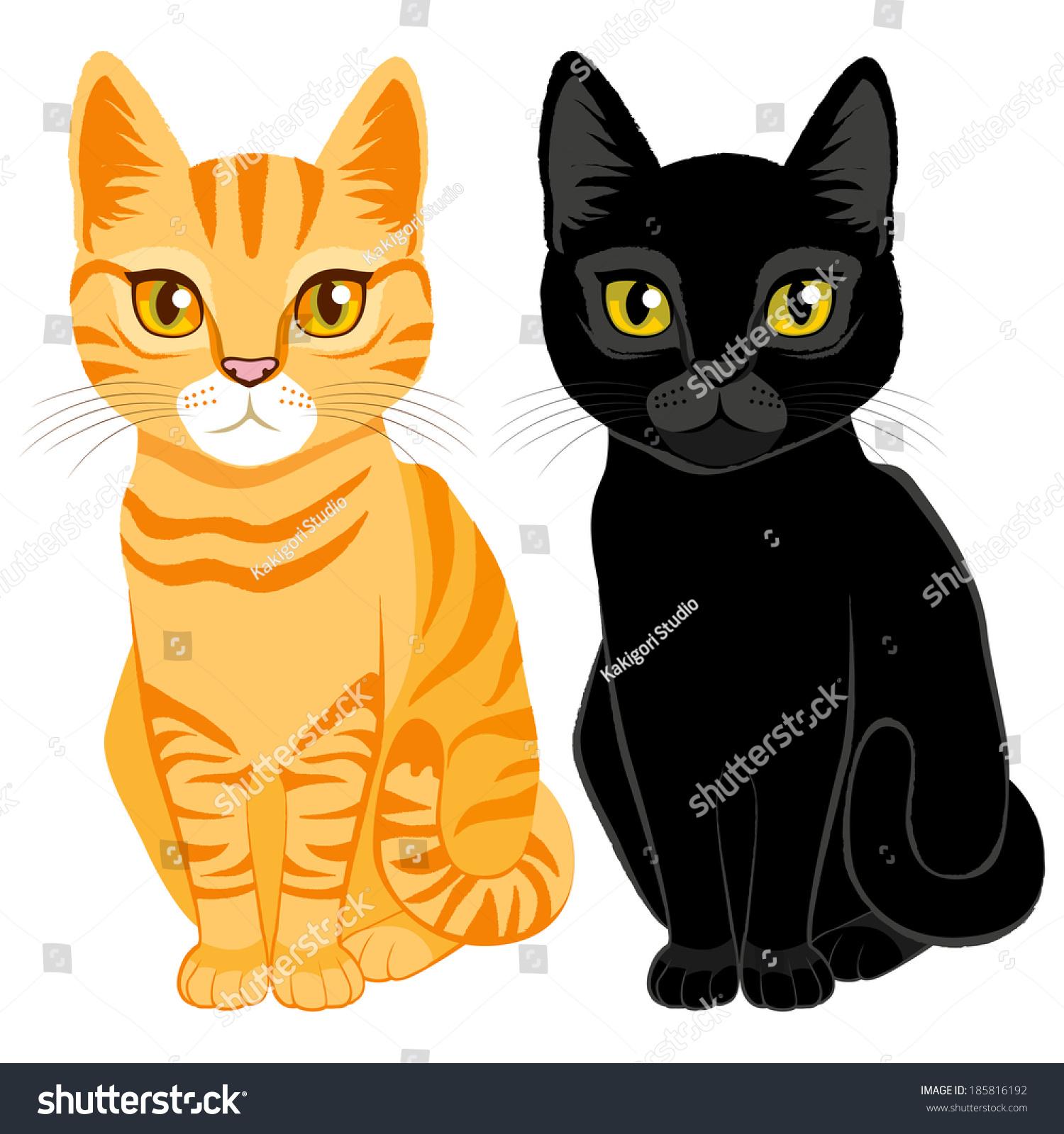 可爱的橙色虎斑猫,黑色和橙色和黄色的眼睛-动物