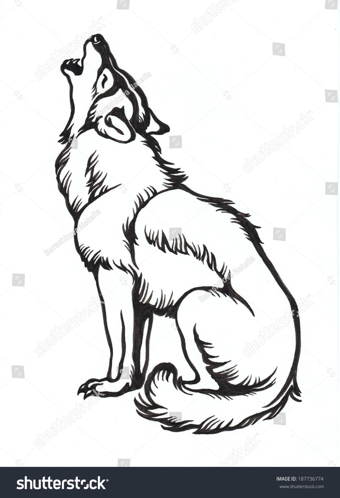 墨水手绘,狼,插图.-艺术,自然-海洛创意(hellorf)--.