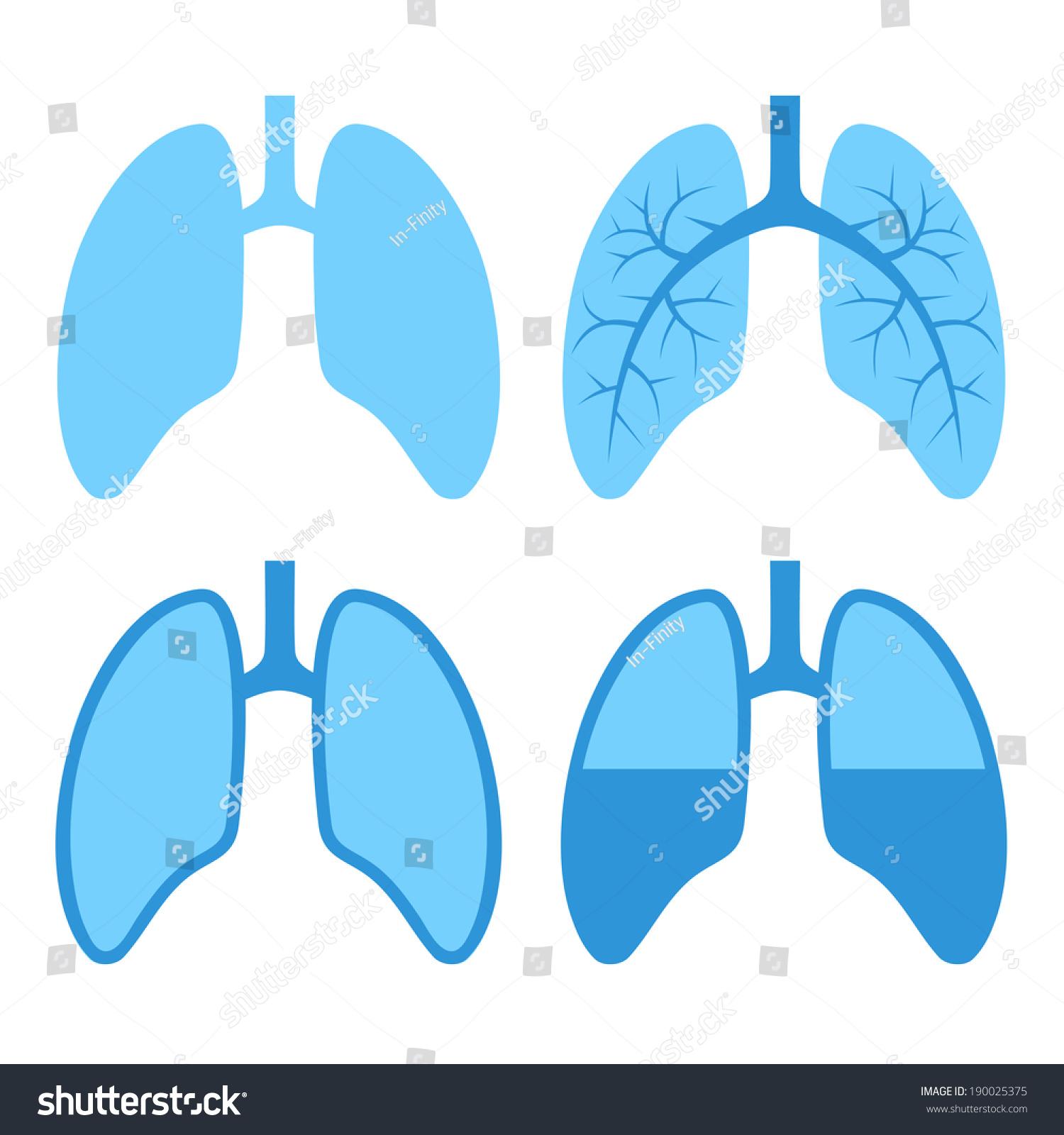 人类肺图标设置