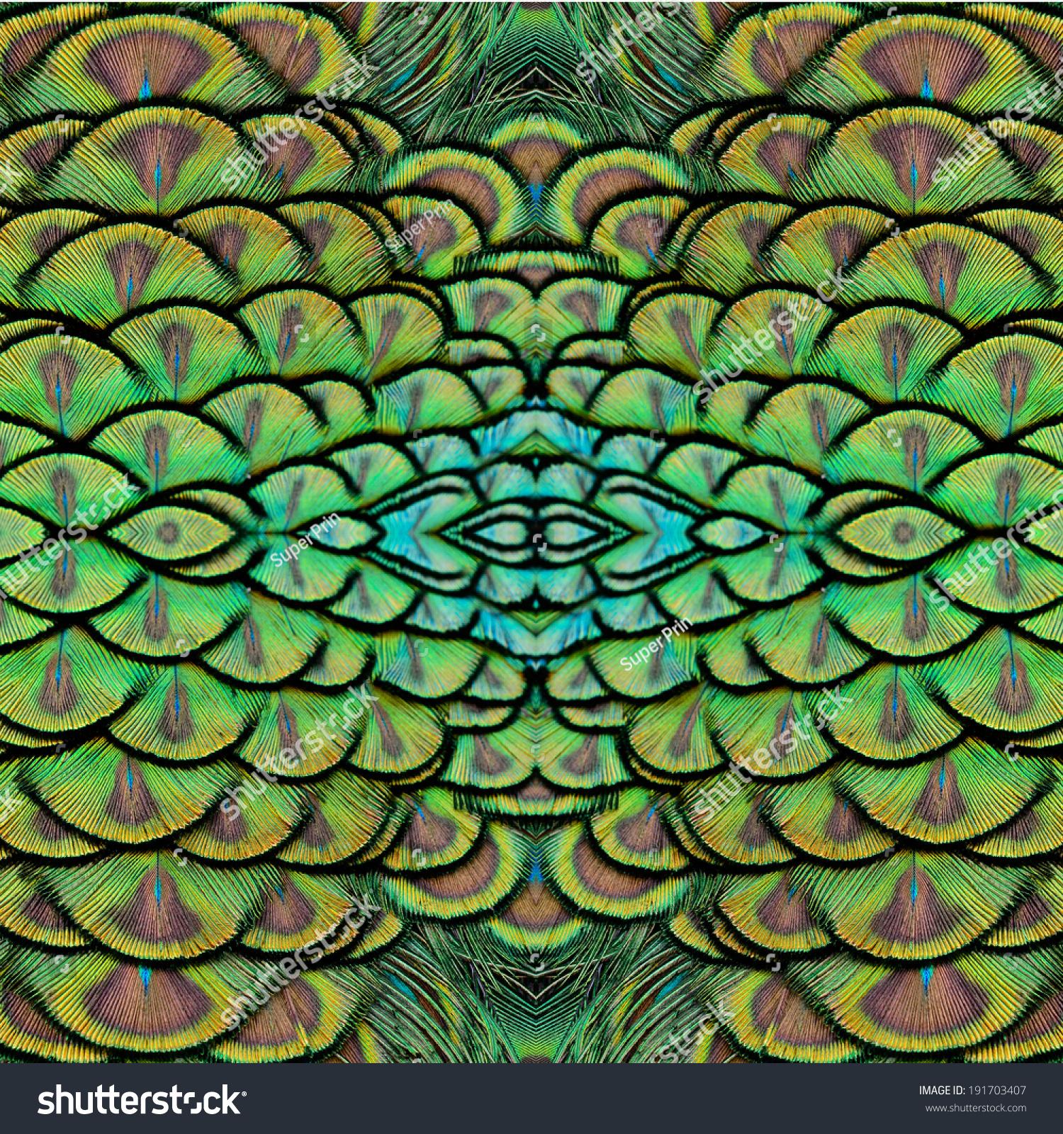 背景图案由绿色印度孔雀羽毛-背景/素材,自然-海洛()