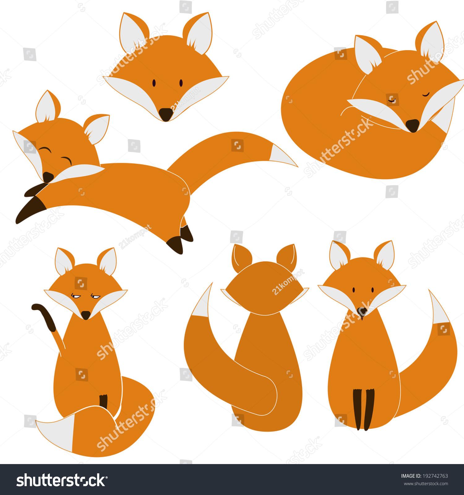 可爱的狐狸集-动物/野生生物