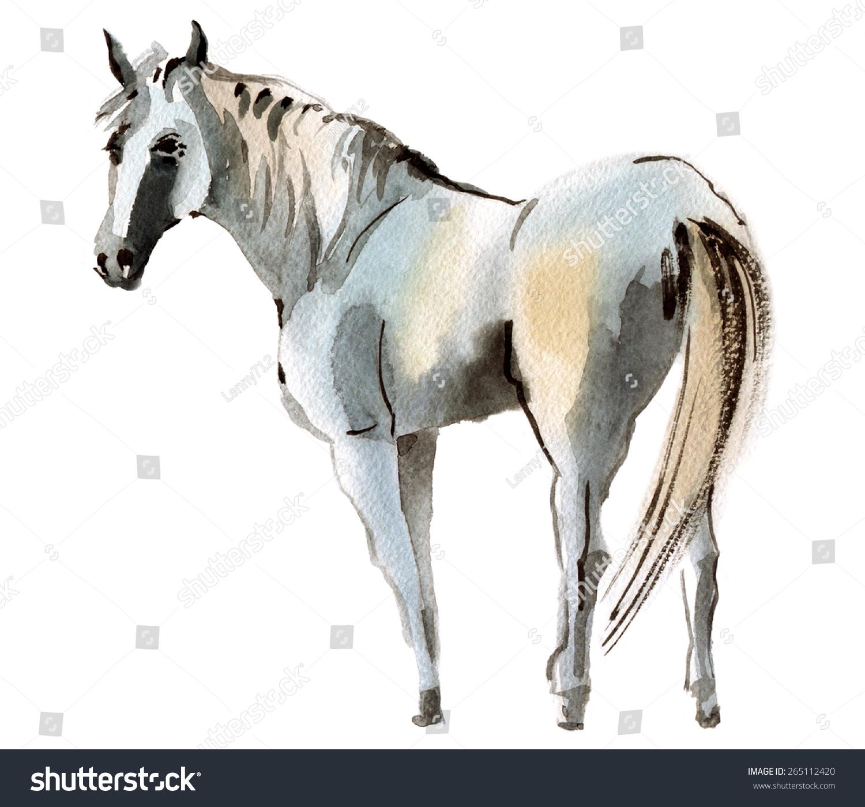 水彩插画的一匹马-动物/野生生物-海洛创意(hellorf)