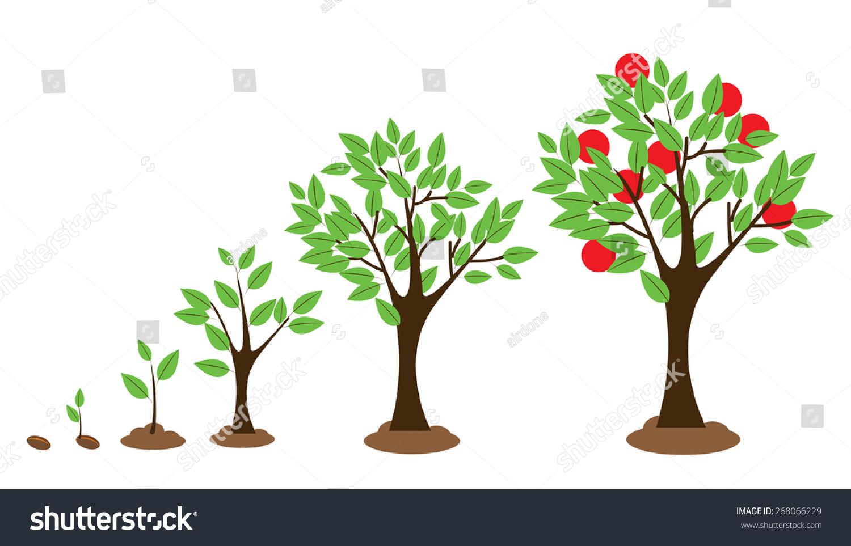 树木生长图的矢量插图孤立在白色的-自然-海洛创意()