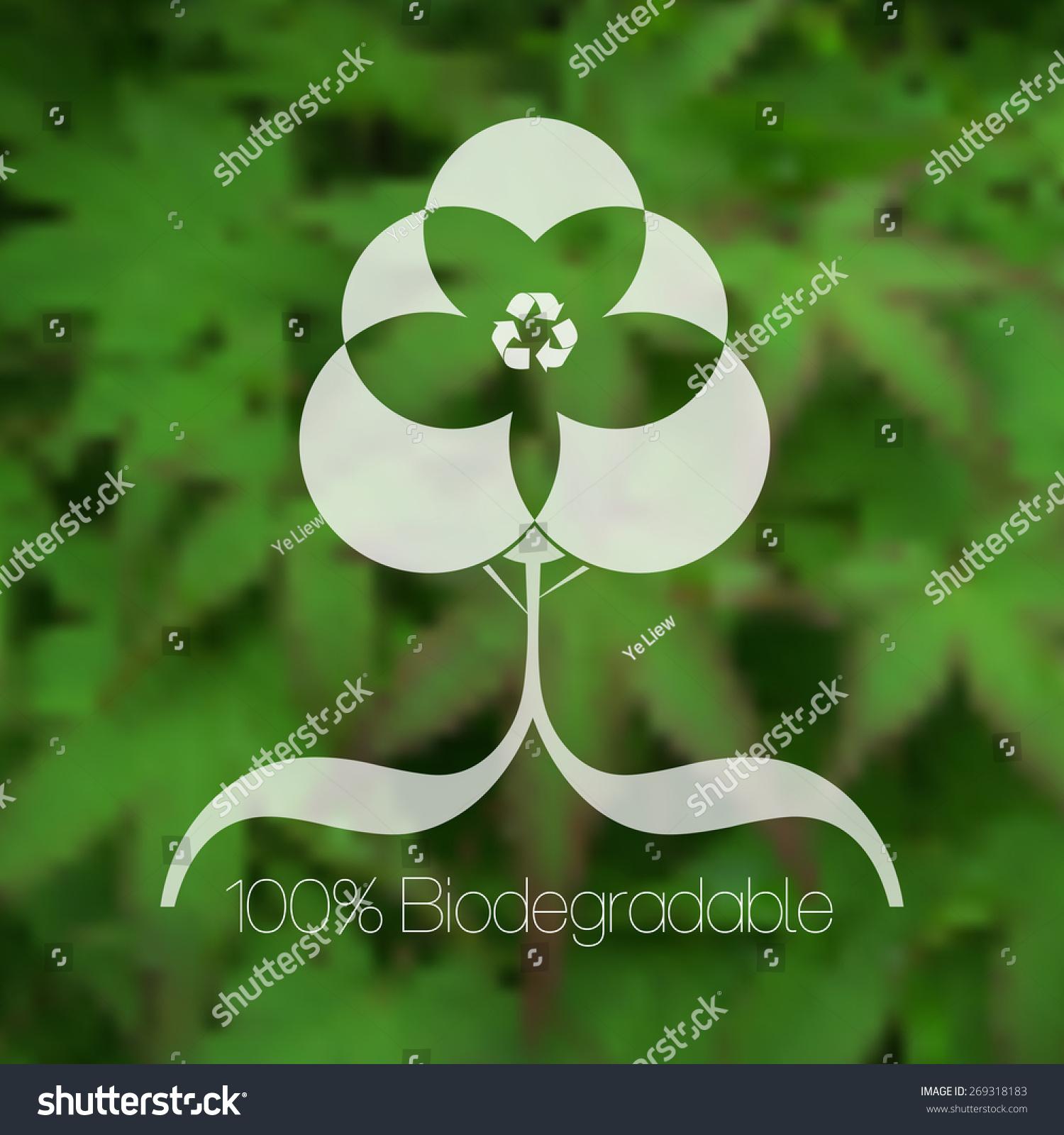 安全透明绿叶ppt素材