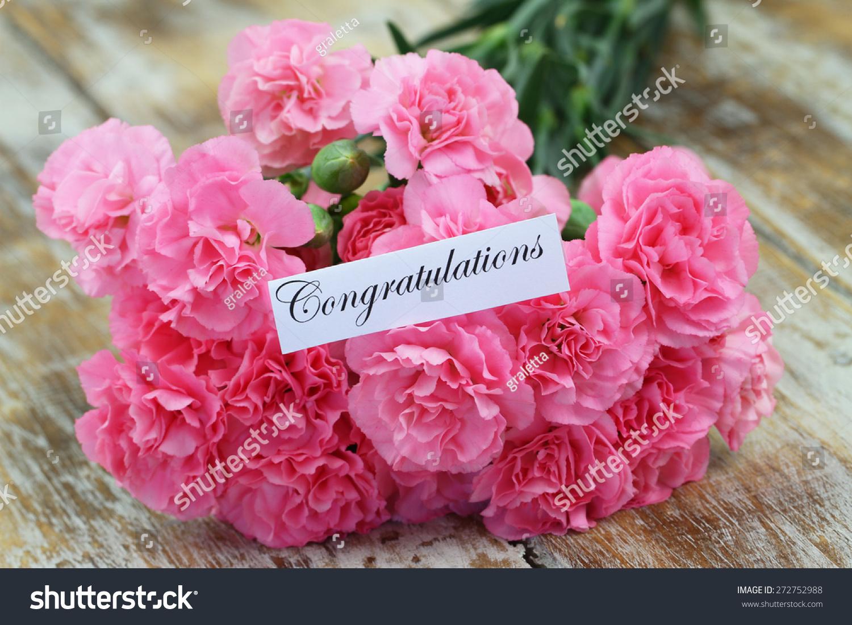 祝贺卡片,粉红色的康乃馨