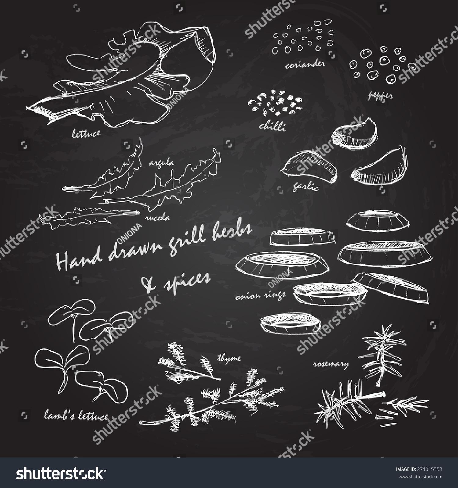 手绘烧烤烤架药草和香料白色在黑板上-食品及饮料