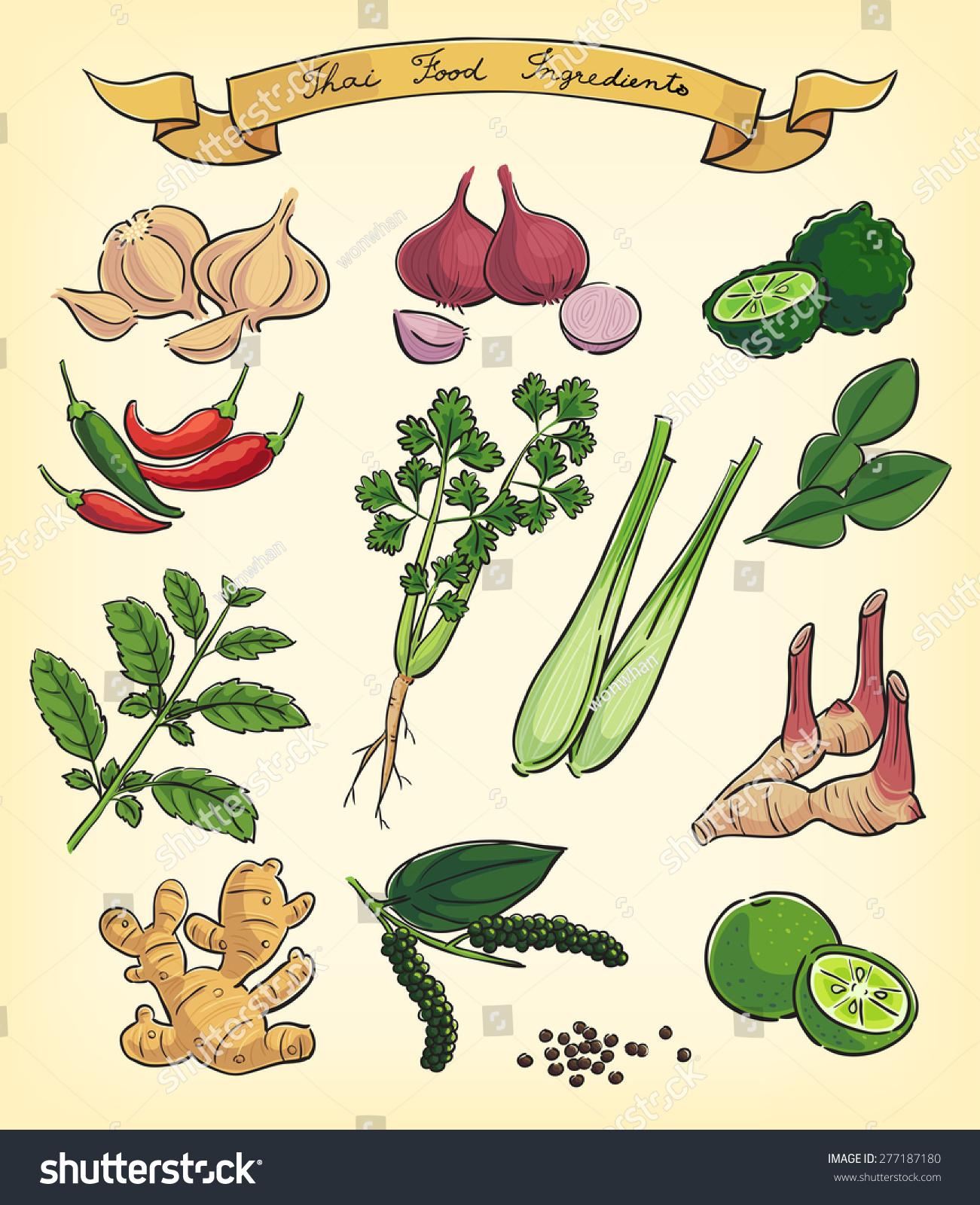 手绘插图的泰国食品配料-食品及饮料