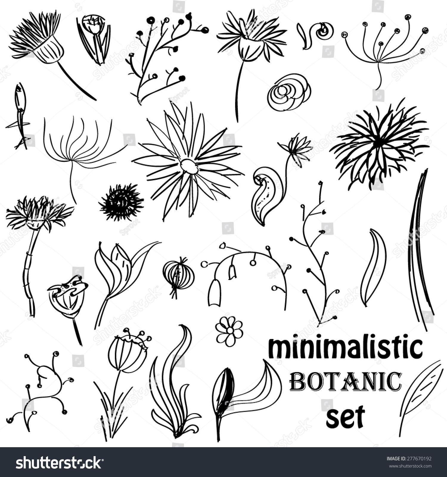 简约的手绘花卉元素集-自然,复古风格-海洛创意()-合.