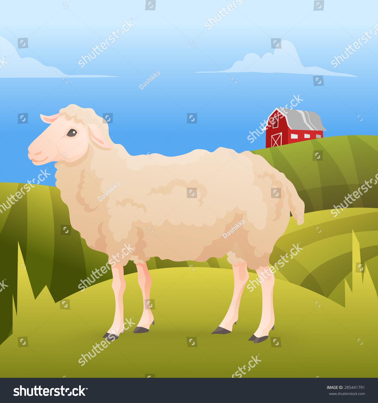 态度可爱的绵羊站在肝和农场的背景.矢量图-动物/野生