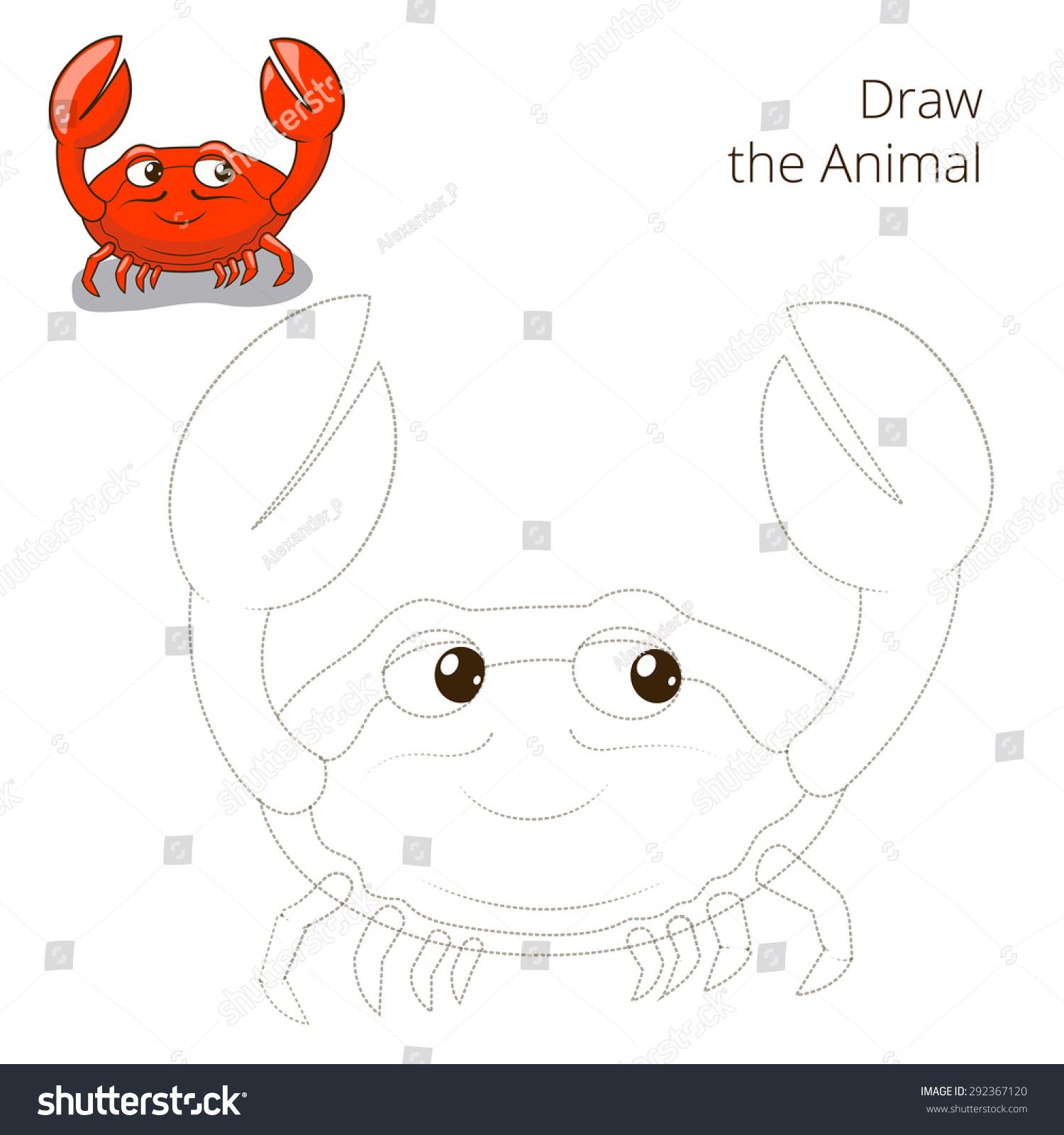 画出鱼动物蟹教育游戏光栅的版本-动物/野生生物,教育