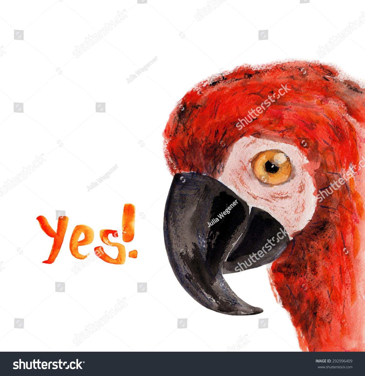 是的!水彩插图.手绘-动物/野生生物