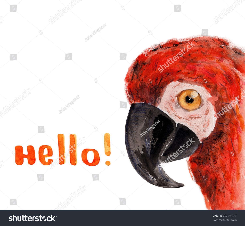 你好!水彩插图.手绘-动物/野生生物