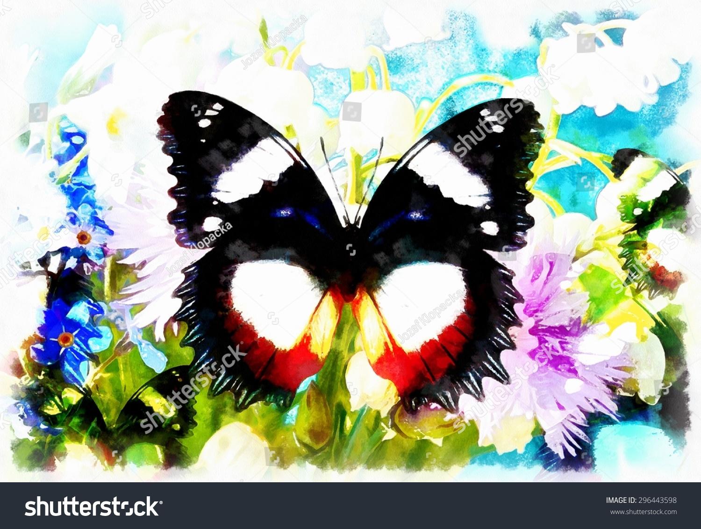 蝴蝶植物拼贴画展示