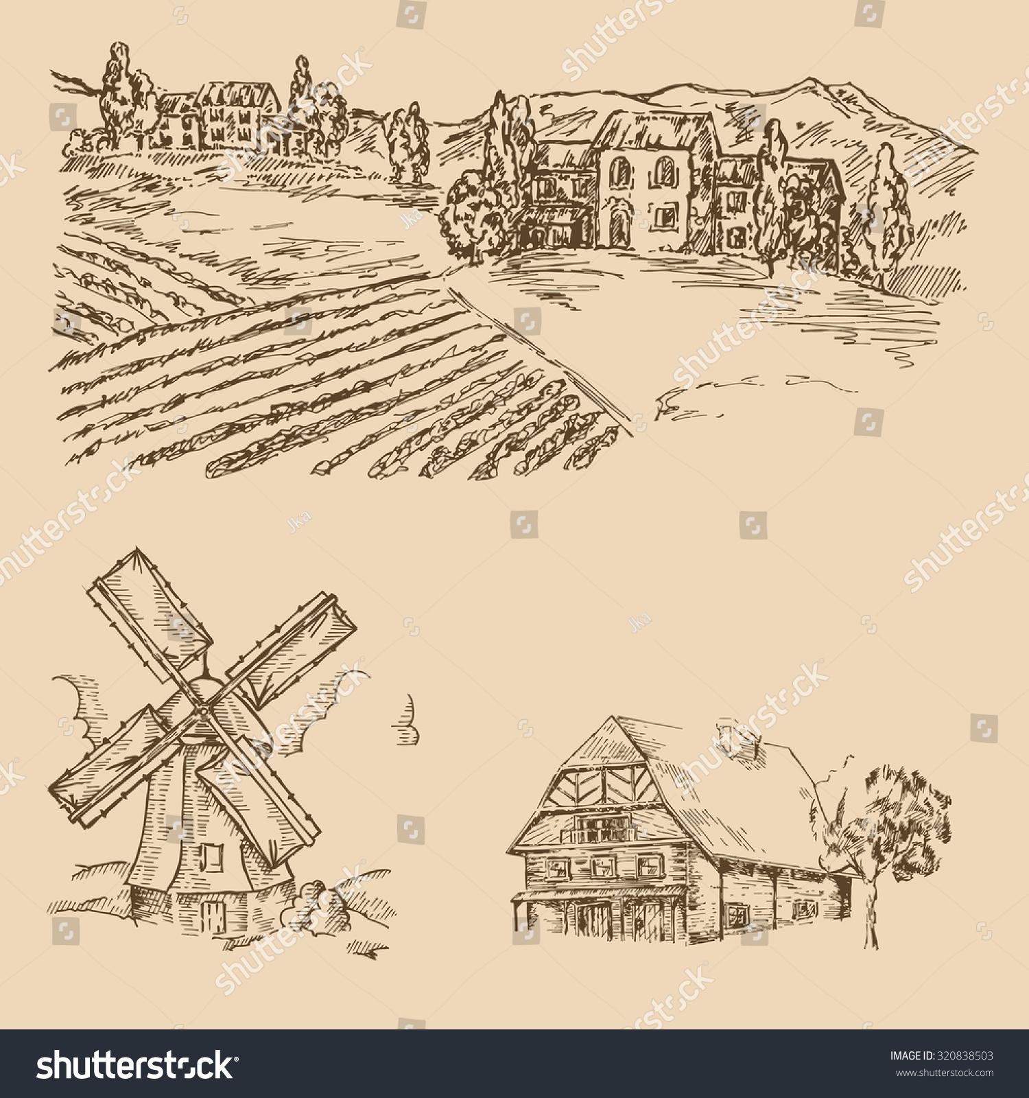 农场动物铅笔画