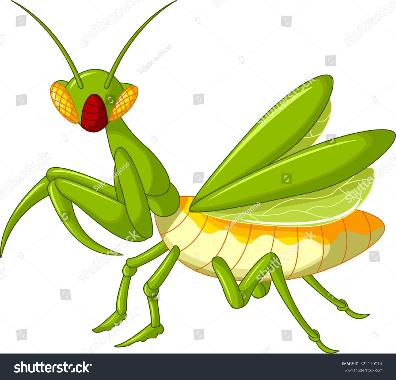 螳螂蚱蜢卡通-动物/野生生物-海洛创意(hellorf)