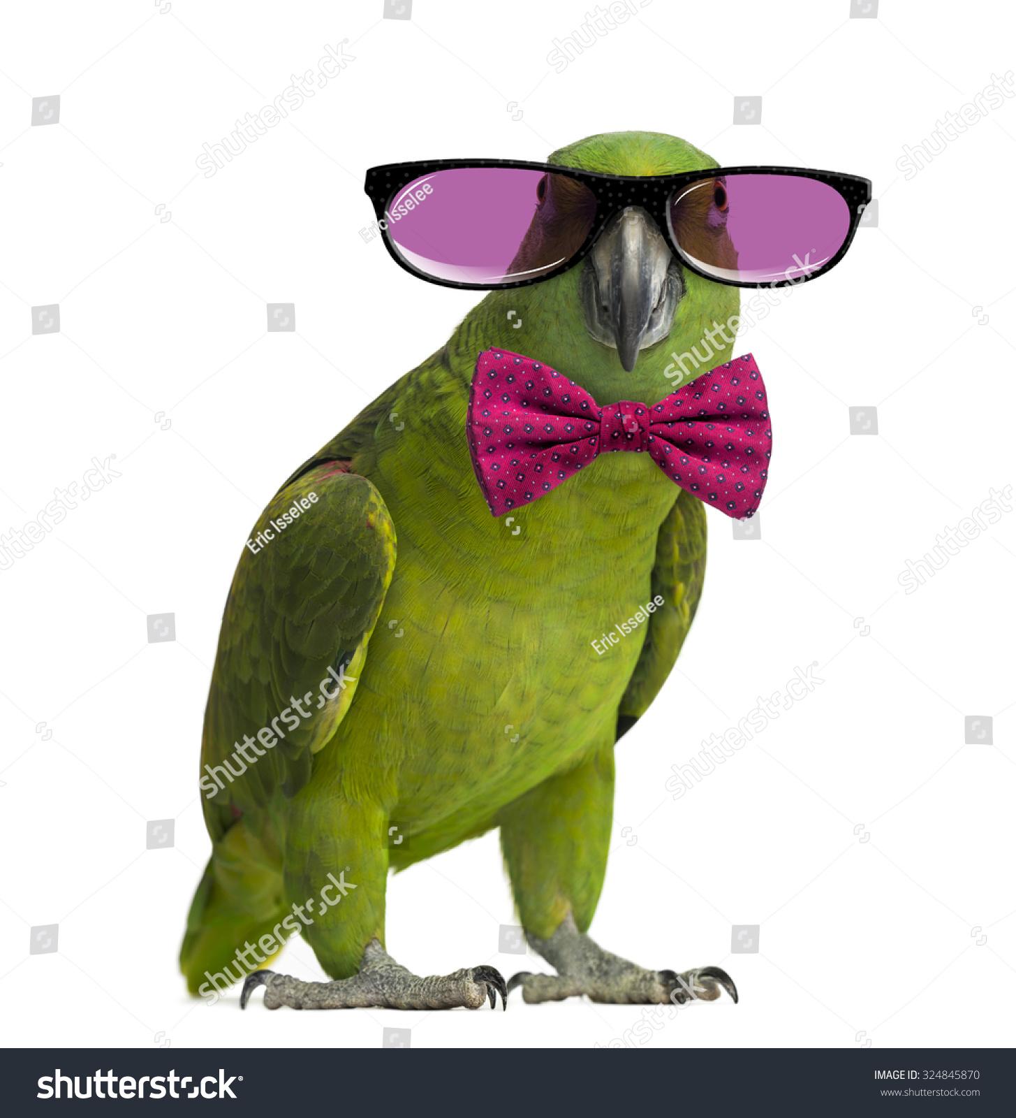 white oakley prescription glasses  glasses and a