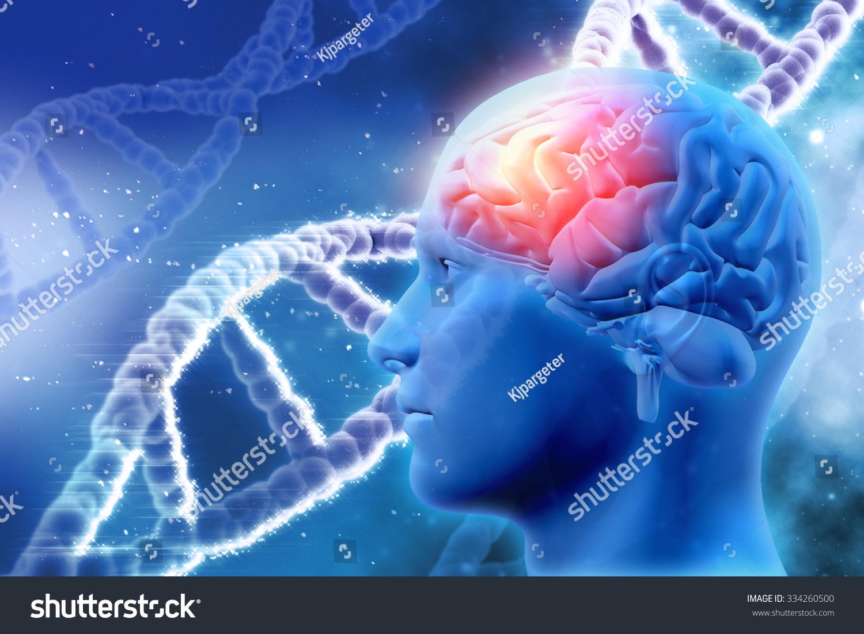 三维医学背景与男性大脑和dna链-医疗保健