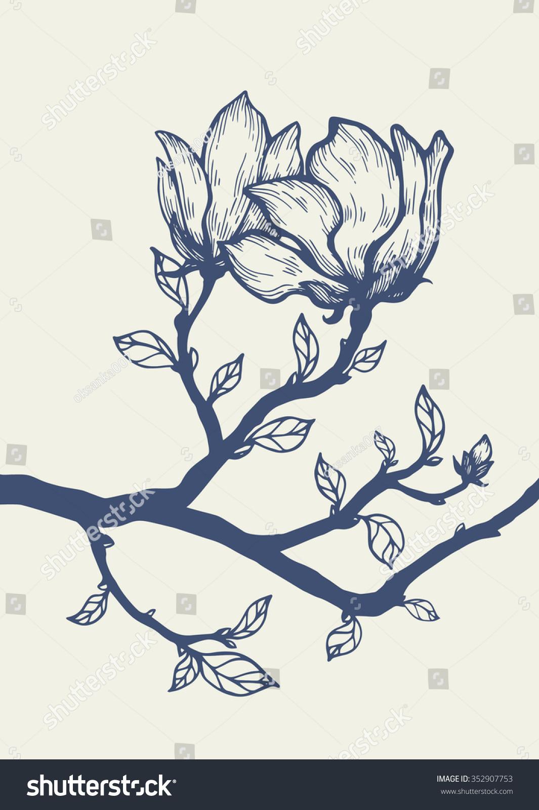 木兰开花树枝.花卉雕刻.向量的花.手绘艺术作品.爱,,.