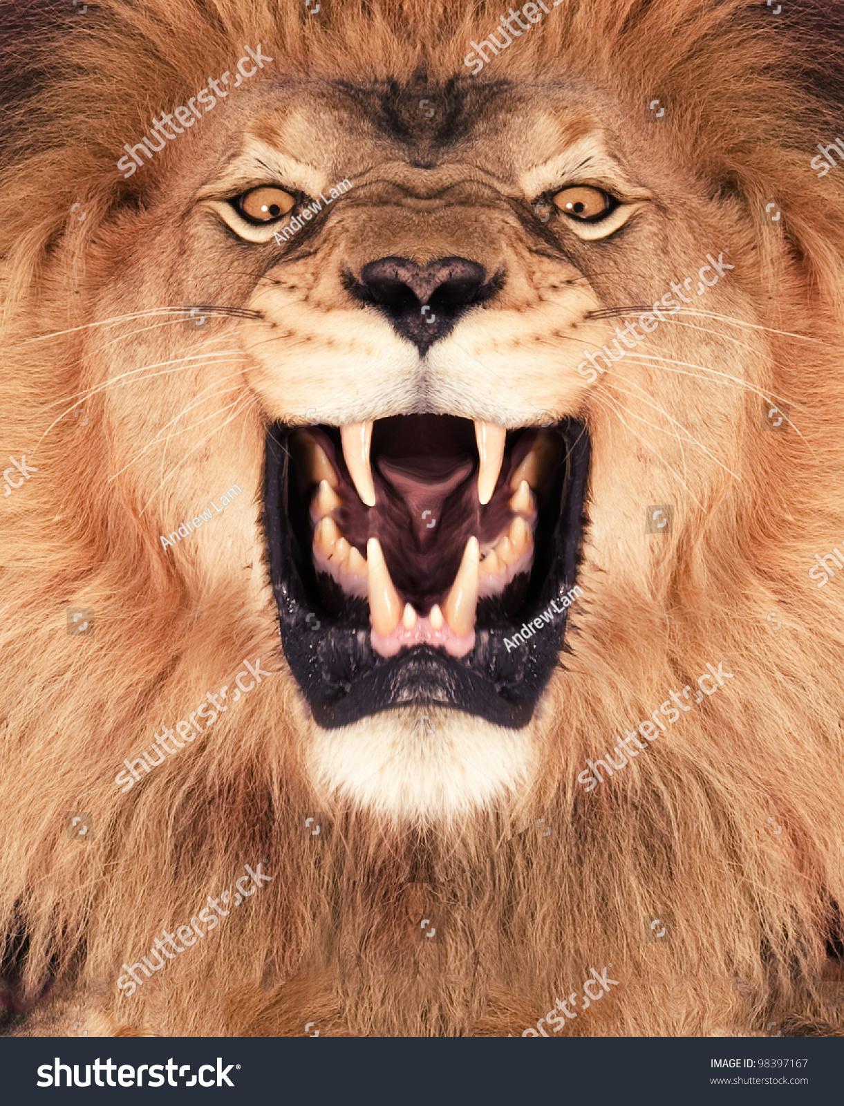 手工制作纸杯动物 狮子